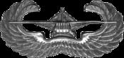 175px-USAAF_-_Glider_Pilot_4