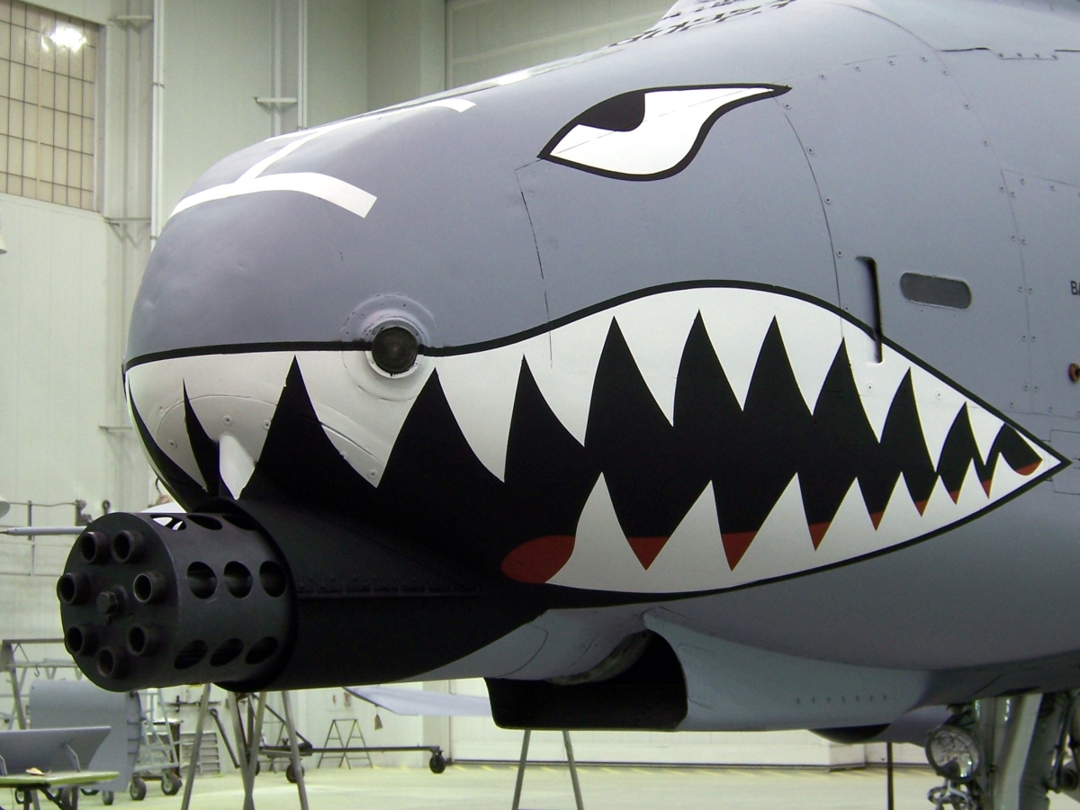 the a 10 a plane for the usaf to kill grunts and co